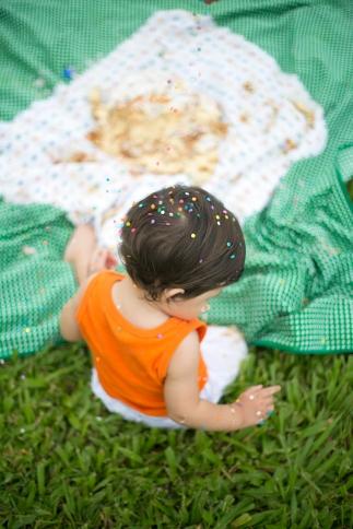 Leo {Smash the Cake}